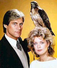 TV Show That Should Not be Movies - Manimal